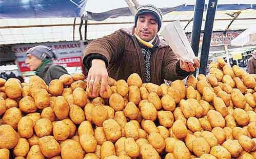 صادرات سیب زمینی به ترکیه