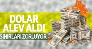 دلار در ترکیه گران شد