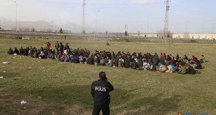 2 هزار و 11 پناهجوی غیرقانونی در ترکیه دستگیر شدند