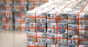 نگاهی به بیشترین سهم بودجه 2019 ترکیه