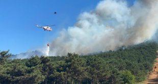 مناطق جنگلی استانبول دچار آتشسوزی شد