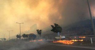 آتش سوزی در جنوب ترکیه