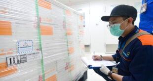 ترکیه اولین محموله از واکسن کروناویروس را دریافت کرد