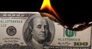 سیاست جدید ترکیه درمورد دلار