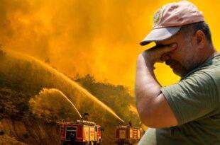 ادامه بحران آتش سوزی جنگلی در ترکیه