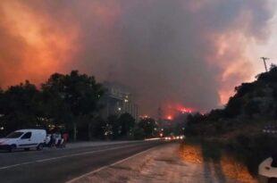 آتش سوزی در میلاس به نیروگاه سرایت کرد
